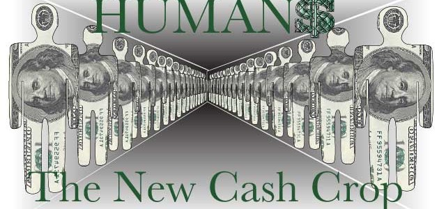 Humans the new cash crop
